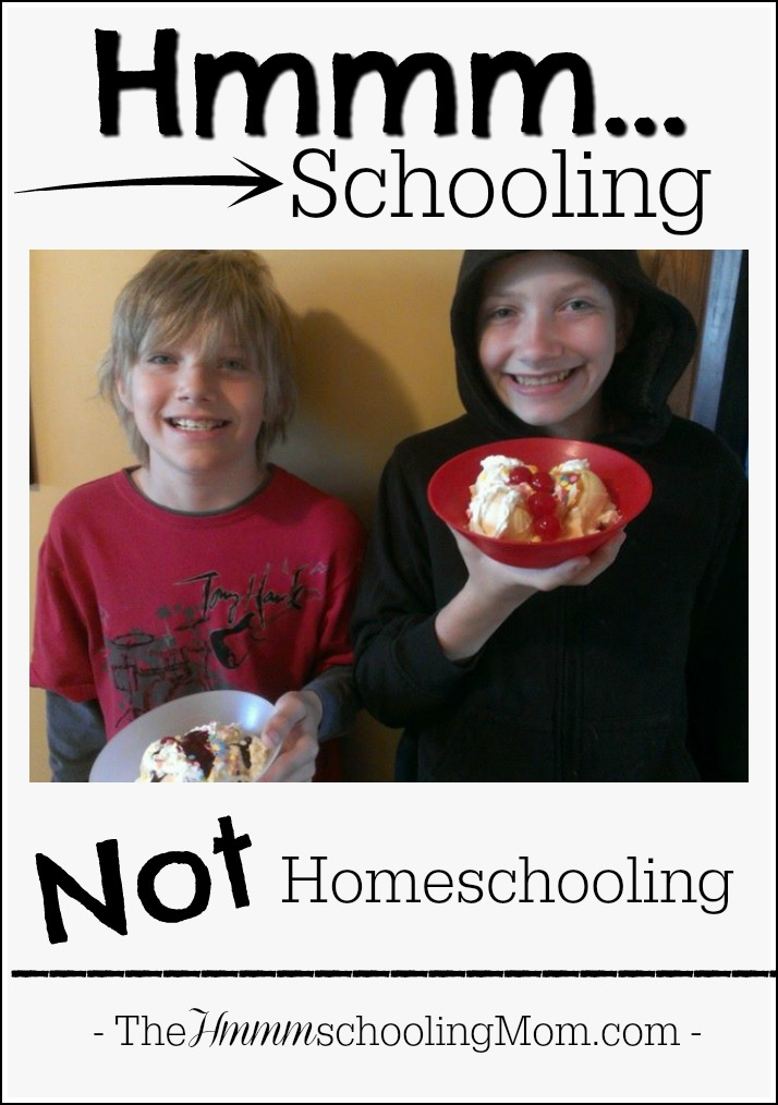 What IS Hmmmschooling, and why did I name my blog after it? -->Hmmmschooling, Not Homeschooling : TheHmmmschoolingMom.com