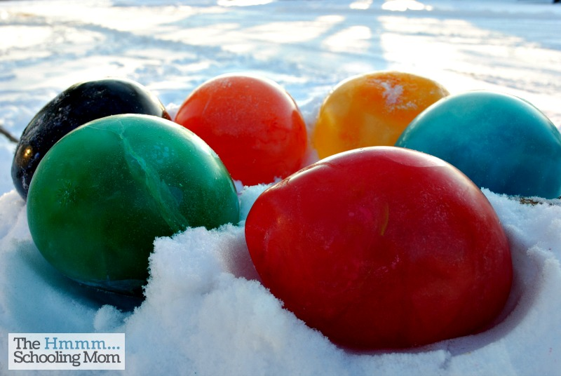 When the temps turn cold, try your hand at making frozen colored water balloons. Here was out experience, along with some tips for what to do and not do!