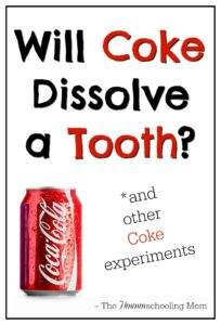 Will Coke Dissolve a Tooth? (and other Coke experiments) - The Hmmmschooling Mom