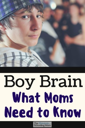 Take heart, mama. Sometimes the issues you have with your son is because he has a boy brain, and you don't. Let me explain how this comes into play...
