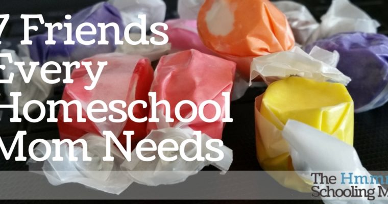 7 Friends Every Homeschool Mom Needs