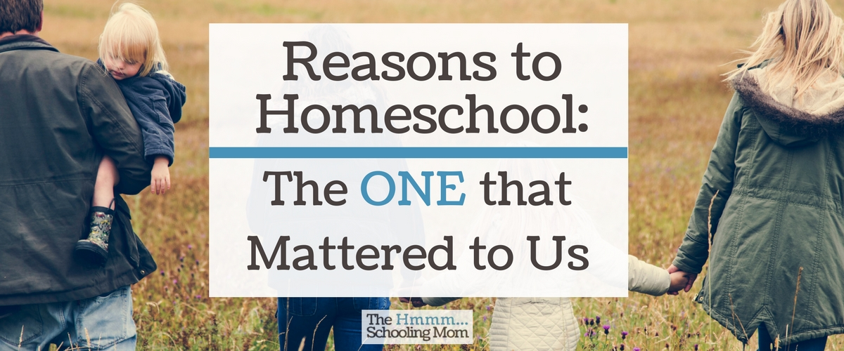 Reasons to Homeschool: The ONE that Mattered to Us