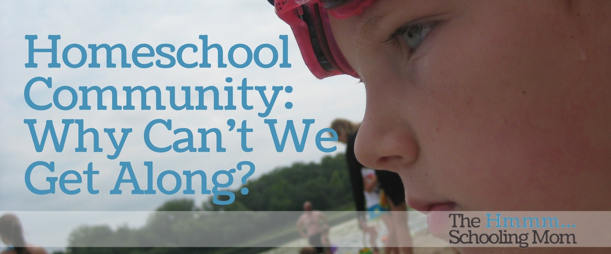 Homeschool Community: Why Can't We Get Along?