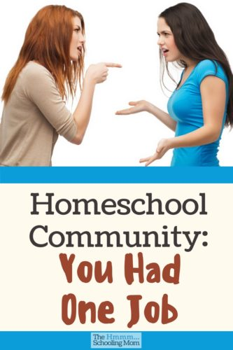Let's be honest, homeschool community: you had one job. And the judgement, bickering and mom-war type pride isn't helping you get the job done.