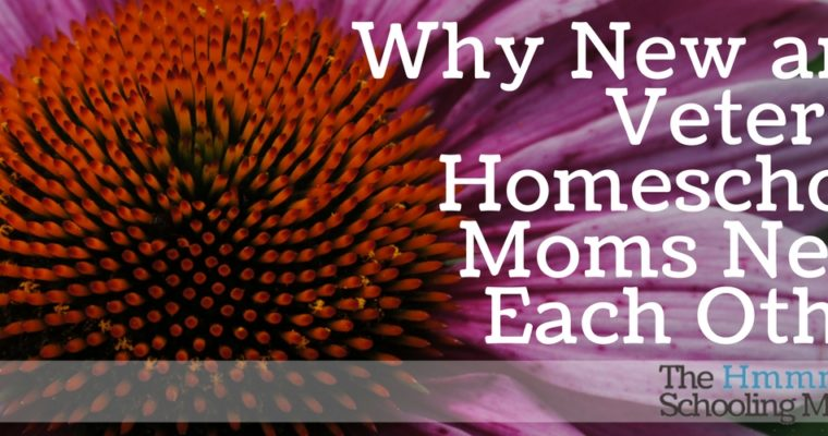 Why New and Veteran Homeschoolers Need Each Other