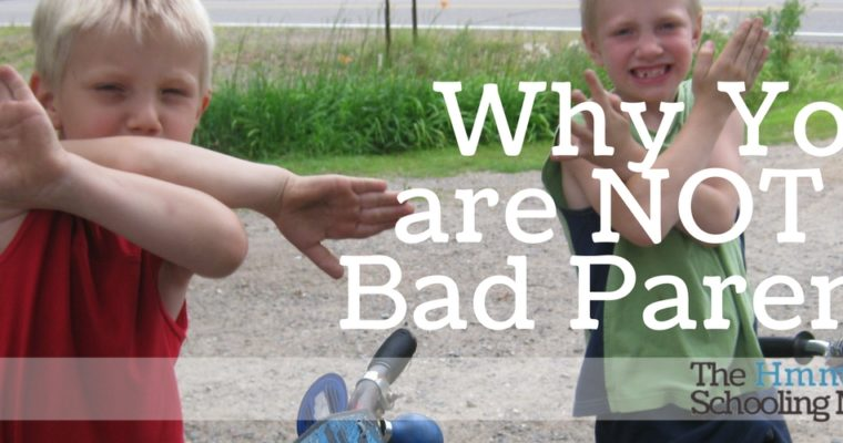 Why You Are Not a Bad Parent