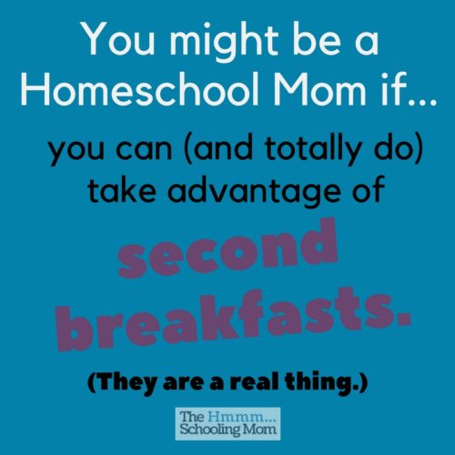 How do you know you're a homeschool mom? If you smile, laugh, or nod your head to the things in this list. Can I get an amen?