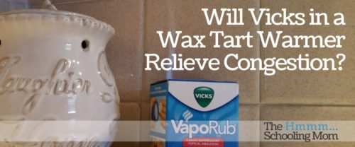 Pinterest told us that Vicks in a wax tart warmer would relieve congestion when my sons came down with a cold. Did it work? Let my son tell you.