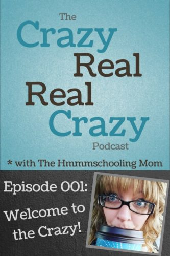 Looking for a podcast about homeschooling, parenting, and life? Welcome to the Crazy Real, Real Crazy Podcast (brought to you by The Hmmmschooling Mom) where we discuss all of these things in a crazy real, real crazy way!