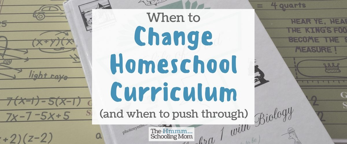 Wondering if it's time to change homeschool curriculum? Here is a lesson my son learned when he asked for it to happen here.