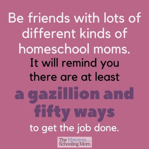 We all need friends, right? Here are 7 types of homeschool mom friends that we all need in order to get through the homeschool life with minimal scarring.