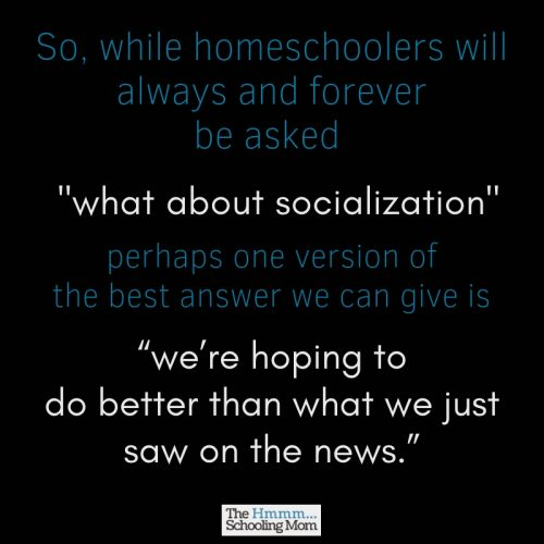 """But, what about socialization?"" It's the question that comes .03 seconds after you announce your decision to homeschool. Here something I'd like to say in response to the homeschool socialization question..."